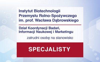 Specjalista w DI